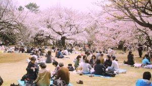 người dân đất nước Nhật Bản có sức khỏe tốt nhờ chế độ ăn uống lành mạnh